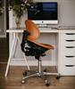 Bild 5 Saga ergonomisk arbetsstol